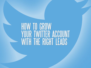 How to grow your Twitter account with the right leads